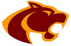 Oakton High School's mascot red cougar