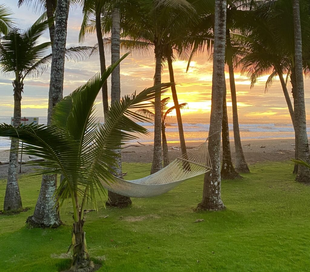 A tropical beach with a hammock and palm trees all around. Sunset over the water.